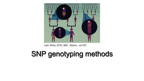 SNP genotyping methods